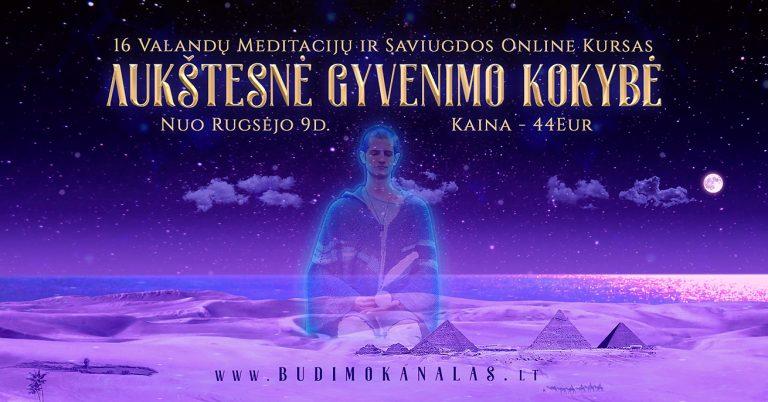 Internetinis Kursas Budimo Kanalas Aukštesnė Gyvenimo Kokybė Paulius Daukšas